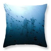 Diving With Fishes Throw Pillow