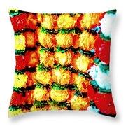Diwali Decorations 4 Throw Pillow