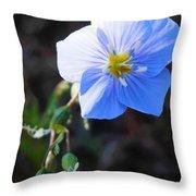 Dixie Blue Throw Pillow