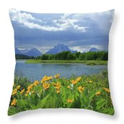 Dm9235 Mt. Moran From Oxbow Bend Throw Pillow