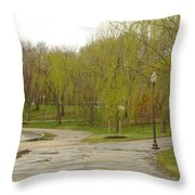 Dnrf0401 Throw Pillow