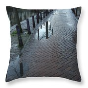 Dnrh1109 Throw Pillow