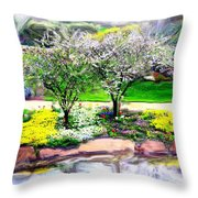 Do-00066 Lake Walk Throw Pillow