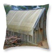 Do-00070 Small Cabin Throw Pillow