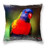 Do-00153 Colourful Lorikeet Throw Pillow