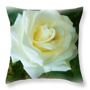 Do-00300 La Rose De Aaraya Throw Pillow