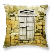 Do-00322 An Old Door And Wall Throw Pillow
