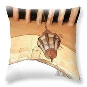 Do-00326 Old Lantern In Beiteddine Throw Pillow
