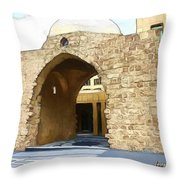 Do-00365 Historic Tomb In Downtown Throw Pillow