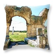 Do-00409 View On Arena In Tyr Throw Pillow