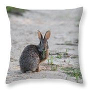 Do I Have Something On My Lips Throw Pillow