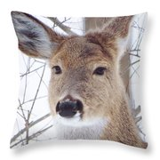Do You Hear What I Hear? Throw Pillow by Lori Frisch