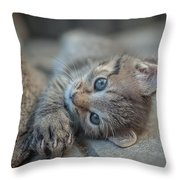 Do You Like Me Right Throw Pillow