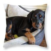 Doberman Puppy Throw Pillow