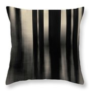 Dock And Reflection I Toned Throw Pillow by David Gordon