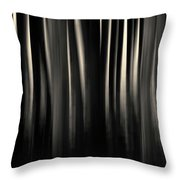 Dock And Reflection II Toned Throw Pillow by David Gordon