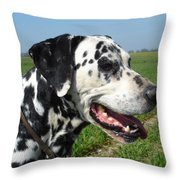 Dodgy The Dalmation Throw Pillow