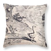 Dodo Bird, Hunted To Extinction Throw Pillow