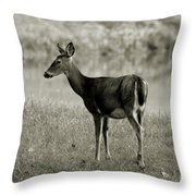 Doe By The Waters Edge Throw Pillow