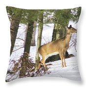 Doe Emerges Throw Pillow
