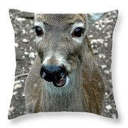 Doe Eyed Deer Talk Throw Pillow