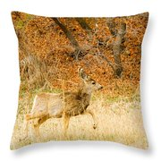 Doe High Stepping On Bald Mountain Throw Pillow