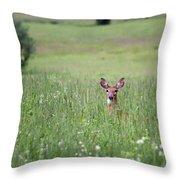 Doe In Grass Throw Pillow