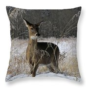 Doe In The Cove Throw Pillow