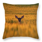 Doe In The Wheat Throw Pillow