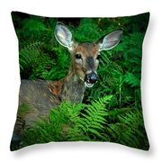Doe In The Woods Throw Pillow