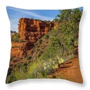 Doe Mountain Trail Throw Pillow