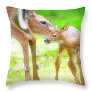 Doe Nuzzles Her Fawn Throw Pillow