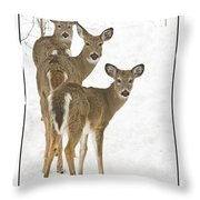 Doe-ray-meh Throw Pillow