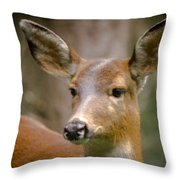 Doe With A Blaze Throw Pillow