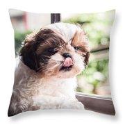 Dog 1 Throw Pillow