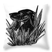 Dog, 19th Century Throw Pillow