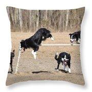 Dog 380 Throw Pillow