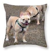 Dog 381 Throw Pillow