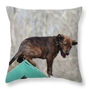 Dog 388 Throw Pillow