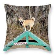 Dog 389 Throw Pillow
