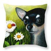 Dog 79 Chihuahua Throw Pillow