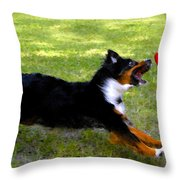 Dog And Red Frisbee Throw Pillow