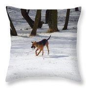 Dog And Winter Throw Pillow
