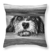 Dog At Gate Throw Pillow