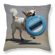 Dog Beach Bliss Throw Pillow
