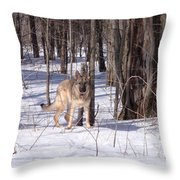 Dog Breed German Shepherd Throw Pillow