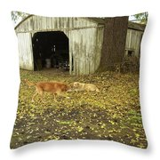 Dog Day's Throw Pillow