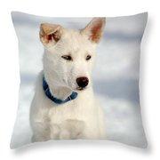 Dog Eared Throw Pillow