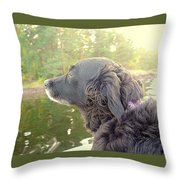 In The Autumn The Dog Looks Back At The Summer   Throw Pillow