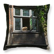 Dog In A Window Above The Canal In Bruges Belgium Throw Pillow